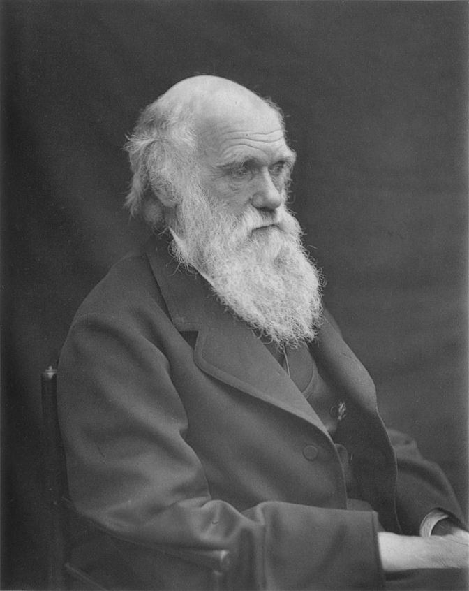 THE DECADENCE OF DARWINISM