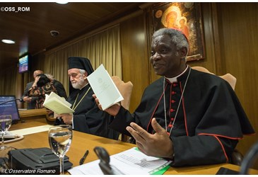 "Fallacy and lies- ""Cardinal Turkson on long term impact of Laudato Si'"""